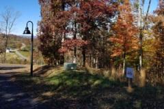 Autumn at Olivette