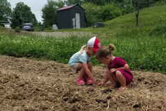 Youth Planting Day- Olivette Farm
