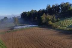 Foggy Morning t the Farm