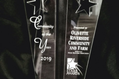 Community of the Year Award