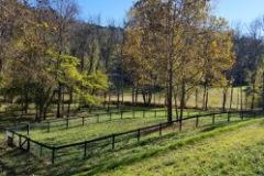 3_Olivette-community-gardens