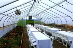 Greenhouse Dinner Setup