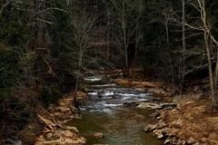 Newfound Creek