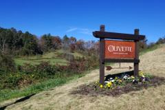 Olivette Entrance