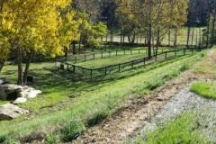 Community Dog Park- Olivette